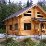 Дом баня из оцилиндрованного бревна фото